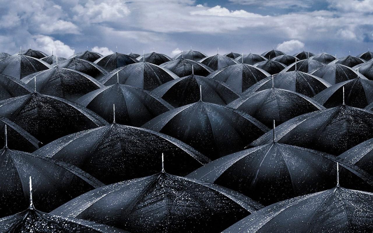 black_umbrellas1.jpg